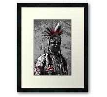 Sun Feather Framed Print