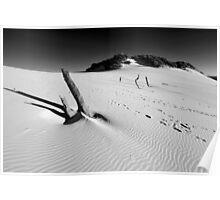 Carlo Sandblow. Rainbow Beach, Queensland, Australia. (3) Poster