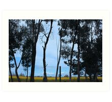 Country Australia - Echuca Art Print