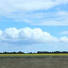 Country Australia - Echuca Landscape by Asterii
