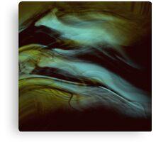 ancient metamorphosis.....creature profiles  Canvas Print