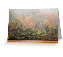 Cataloochee Valley Colors Greeting Card