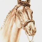 Thoroughbred Horse Portrait by BarbBarcikKeith