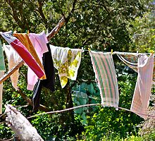 Washing Day...! by Ali Brown