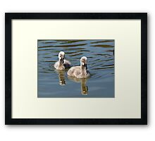 The Two of Us!!! Framed Print