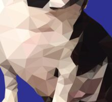 Polygonal Cork Sticker