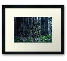 AMONG THE GIANTS Framed Print