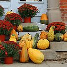 Pumpkins & Mums by Grinch/R. Pross