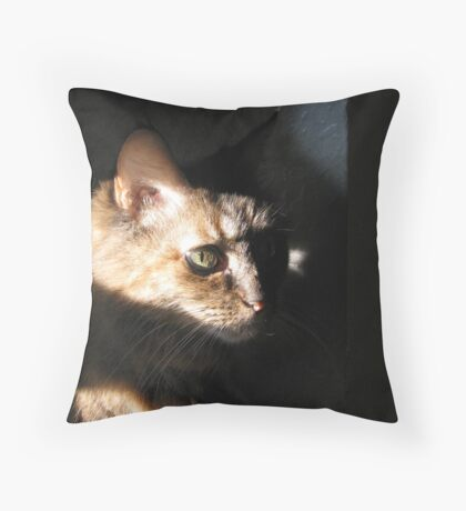 DeLenn Noir Throw Pillow