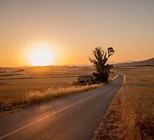 Countryside and sunset by franceslewis