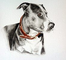 Staffordshire Bull Terrier by Lee Dickinson