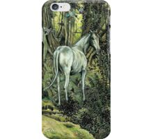 Unicorn & Pixies iPhone Case/Skin