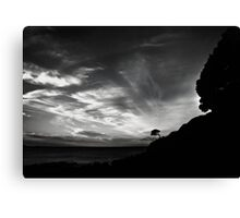 One Tree Canvas Print