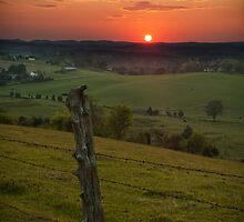 Rural Route by C David Cook