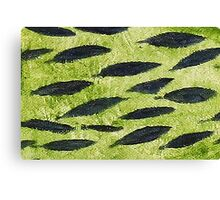 Impression Water Reed Minnows Canvas Print