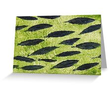 Impression Water Reed Minnows Greeting Card