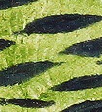 Impression Water Reed Minnows Sticker