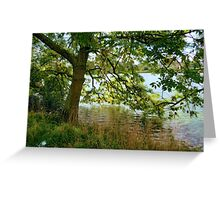 Narcissus Tree Greeting Card