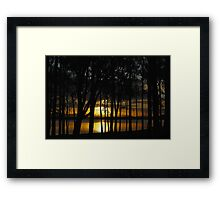 Sunset and Trees Framed Print