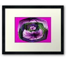 Petunia #1 Framed Print