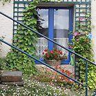 Windowsill France by Jacqueline Eirian McKay