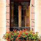Beautiful Window 2 by Jacinthe Brault