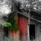 Old Shack by Mechelep