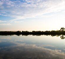 Florida Scene 002 by ValeriesGallery