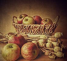 Old Master style  - Apples and Poppies by Rosie Nixon