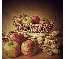 Old Master style  - Apples and Poppies Photographic Print