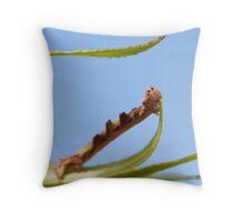 A Twig Caterpillar Throw Pillow