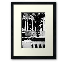 Kadriorg. The Bird. Framed Print