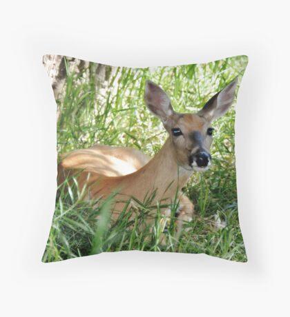 Whitetail Rest Throw Pillow