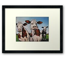 Til the cows come home.... Framed Print