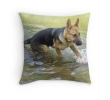 One Fishy Stunned, Two Fishy Stunned, Three... Throw Pillow