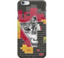 Play Cat iPhone Case/Skin