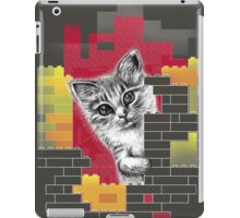 Play Cat iPad Case/Skin