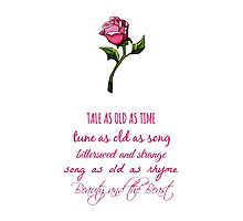 Beauty and the Beast Lyrics Photographic Print