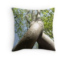 Dance of Trees Flirting Trees Twisted Trees Throw Pillow