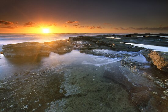 """""""It's the little things..."""" ∞ Caloundra, QLD - Australia by Jason Asher"""