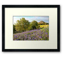 Bluebells at Roseberry Topping Framed Print
