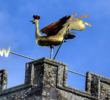 Gold Weather Vane at Axminster Church, Devon UK by lynn carter