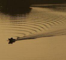 River Trails  by Gary  Bridger