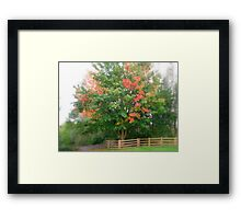 Seasonal Scape Framed Print