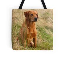 Troy sat patiently. Tote Bag