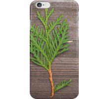 small pine tree iPhone Case/Skin