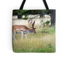 Foraging for food Tote Bag
