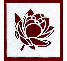 Red Lotus Photographic Print