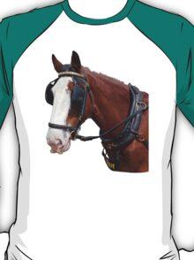 Isle of Man Tram Horse Ian T-Shirt