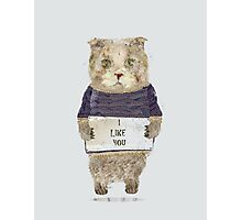 i like you Photographic Print